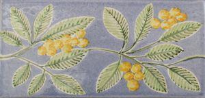 Frise mimosa