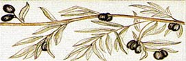 Frise rameau olivier